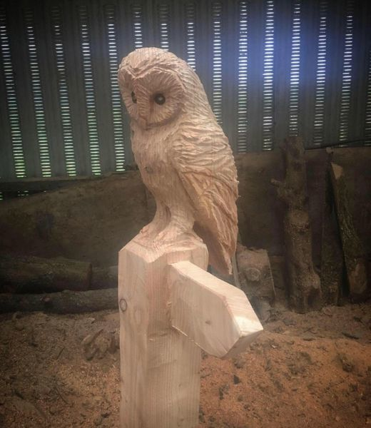 Wooden Hand Carved Owl Signpost