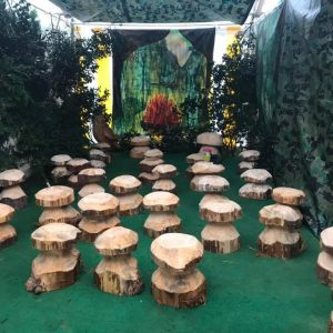 Wooden Hand Carved Mushroom Seats
